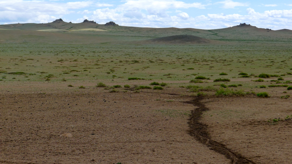The beautiful, open, Mongolian plains.