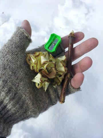 Make pencil shavings of small twigs for fire starter.